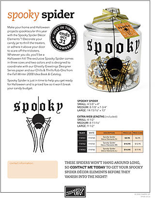 Spooky_Spider_0908
