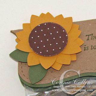 SunflowerStep5