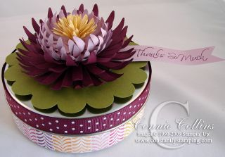 WaterLilly2