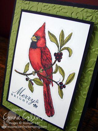 Merry Bright Cardinal 2
