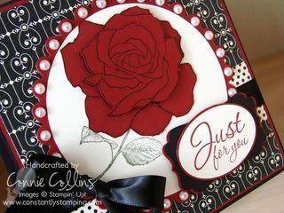 RoseJustForYou2