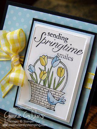 SpringtimeSmiles1