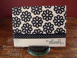 Black&TanBlossoms2