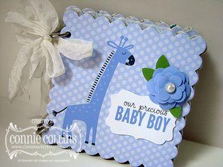 BlogHopDay8-BabyBook1